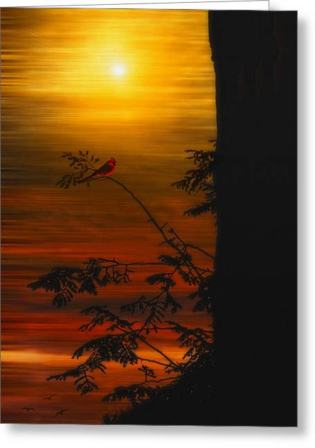 """sunset Photography"" Greeting Cards - The Tree On The Hill Greeting Card by Tom York Images"