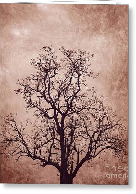 Offshoot Greeting Cards - The tree Greeting Card by Suwit Ritjaroon