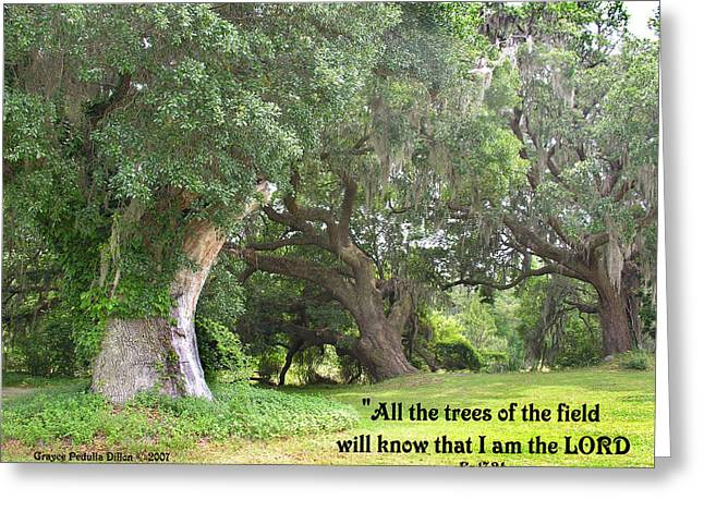 Ezekiel Greeting Cards - The Trees Will Know Greeting Card by Grace Dillon