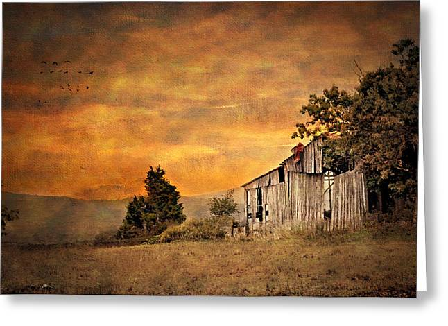 Old Barns Greeting Cards - The View From The Road Greeting Card by Kathy Jennings