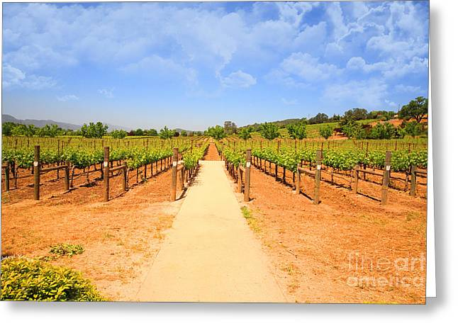 Pinot Noir Greeting Cards - The Vineyard Greeting Card by Cheryl Young