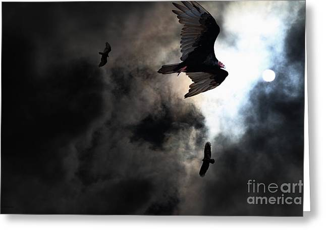 The Vultures Have Gathered In My Dreams . Version 2 Greeting Card by Wingsdomain Art and Photography