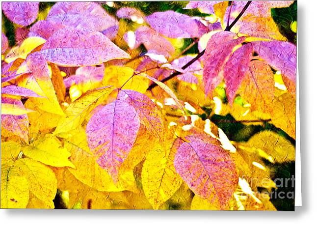 Change Mixed Media Greeting Cards - The Warm Glow In Autumn Abstract Greeting Card by Andee Design