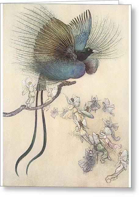 Warwick Paintings Greeting Cards - The Water Babies The Most beuatiful bird of paradise Greeting Card by Warwick Goble