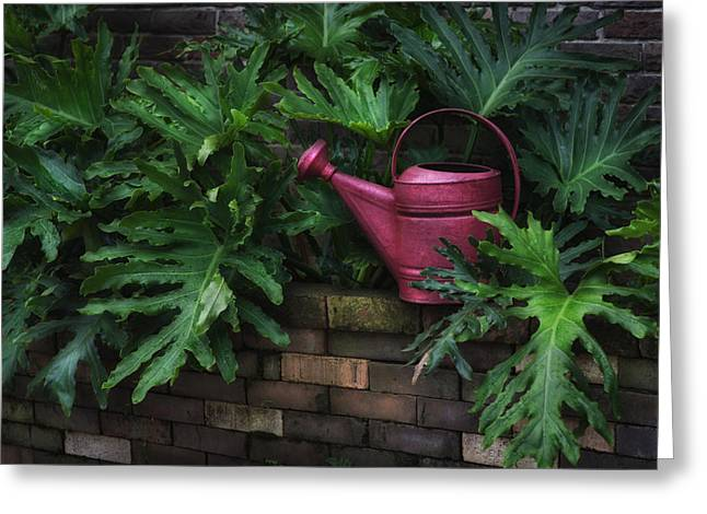 Hattiesburg Photographs Greeting Cards - The Watering Can Greeting Card by Brenda Bryant