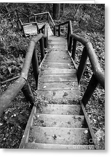 Wooden Stairs Greeting Cards - The way down Greeting Card by Olivier Steiner