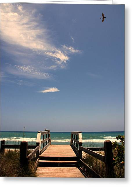 Susanne Van Hulst Greeting Cards - The way out to the beach Greeting Card by Susanne Van Hulst