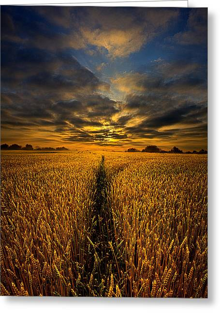 Geographic Greeting Cards - The Way Through Greeting Card by Phil Koch