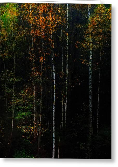 The Way To Glow From The Darkness Greeting Card by Jenny Rainbow