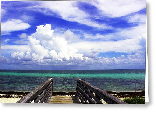 Florida Greeting Cards - The Way to the beach 2 Greeting Card by Susanne Van Hulst
