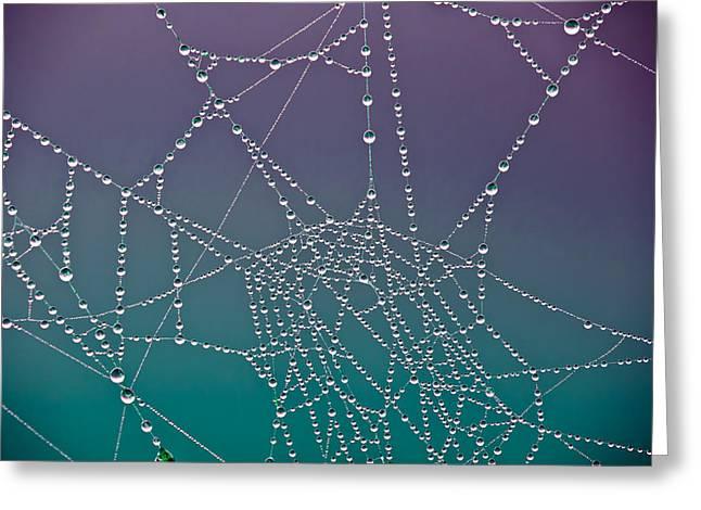 The Web Greeting Card by Joye Ardyn Durham