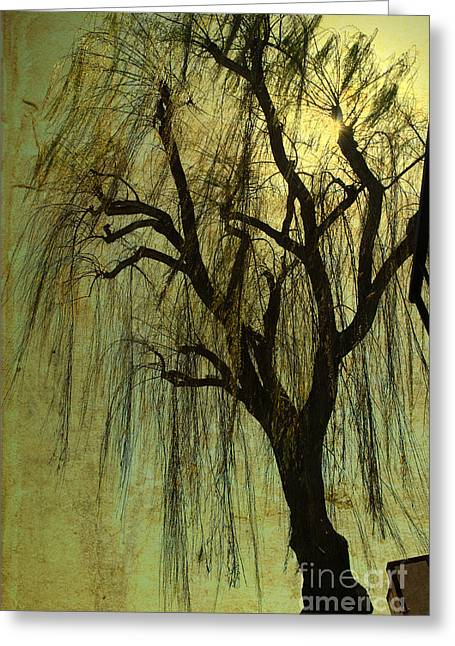 The Willow Tree Greeting Card by Susanne Van Hulst