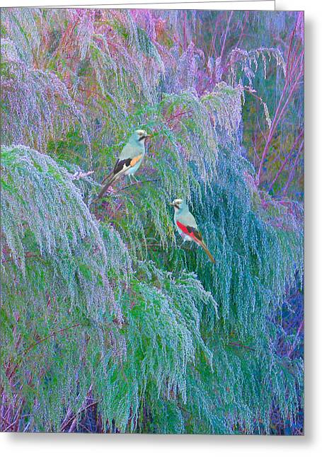 Fantacy Greeting Cards - The Willows Greeting Card by Adele Moscaritolo