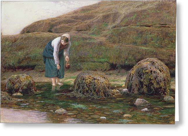 Gatherers Greeting Cards - The Winkle Gatherer Greeting Card by John Dawson Watson