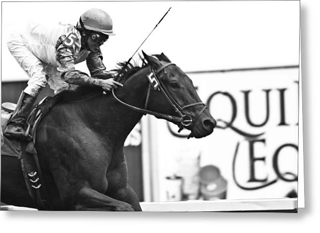 Race Horse Photographs Greeting Cards - The Winner Greeting Card by Tam Graff
