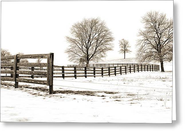 Jak Of Arts Photography Greeting Cards - The Winter Hill Gang Greeting Card by Jak of Arts Photography