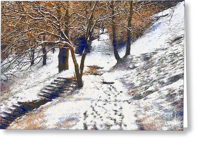 Screen Doors Greeting Cards - The winter park Greeting Card by Odon Czintos