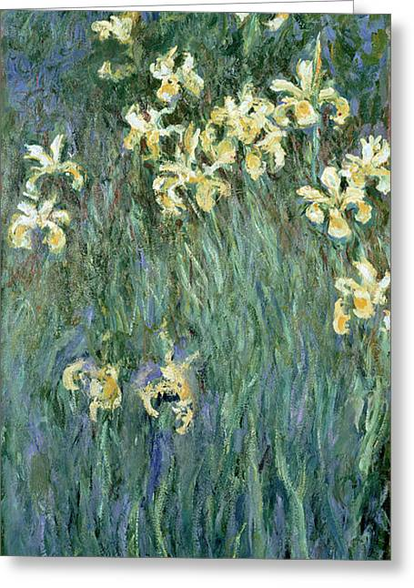 Impressionist Greeting Cards - The Yellow Irises Greeting Card by Claude Monet