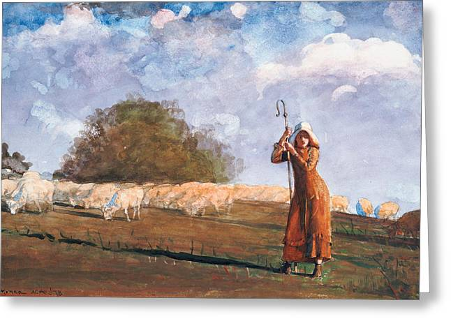 Blue Shadows Greeting Cards - The Young Shepherdess Greeting Card by Winslow Homer