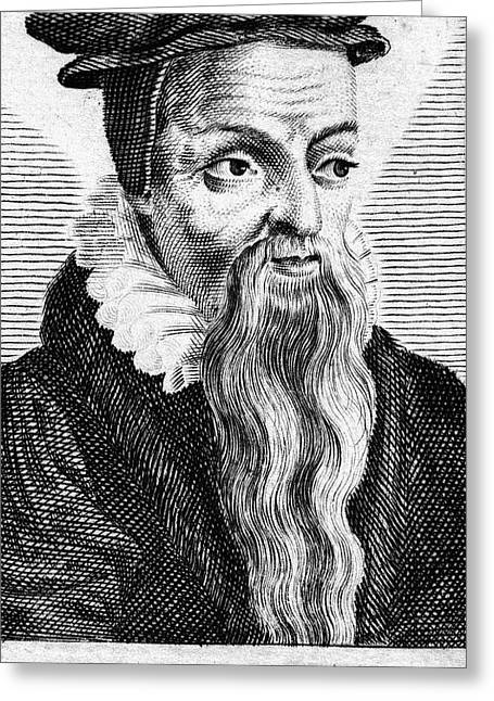 Reformer Greeting Cards - Theodore De BÈze (1519-1605) Greeting Card by Granger