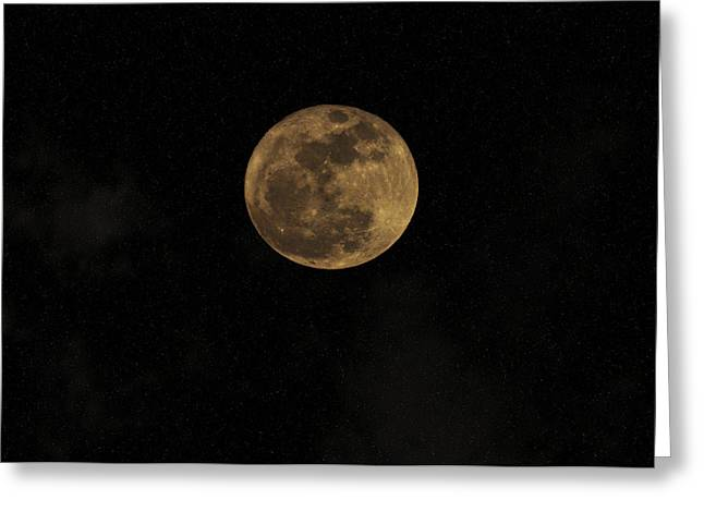 Tonight Greeting Cards - Theres a Moon Out Tonight Greeting Card by Bill Cannon