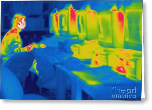 Thermogram Greeting Cards - Thermogram Of A Man Working On Computer Greeting Card by Ted Kinsman
