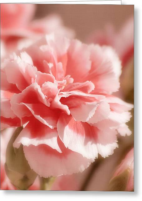 Pink Carnations Greeting Cards - Think Pink Greeting Card by Kim Hojnacki