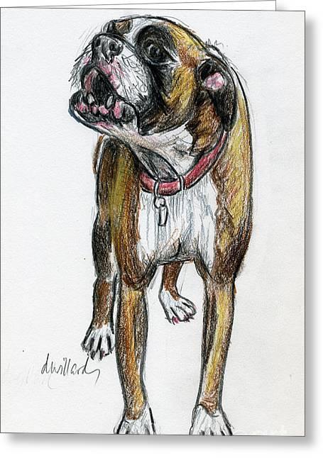 Boxer Drawings Greeting Cards - This Boxer Can Sing Greeting Card by Deborah Willard