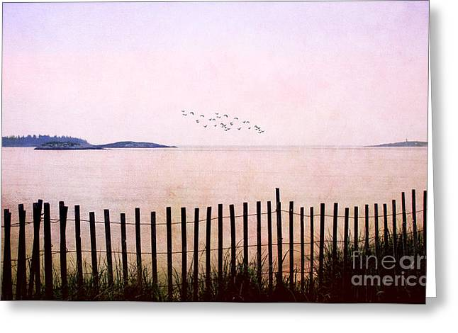 Atlantic Beaches Greeting Cards - This Day Greeting Card by Darren Fisher