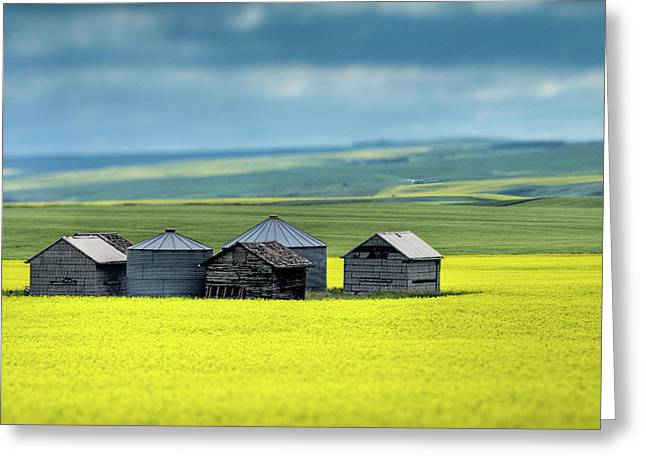 Alberta Prairie Landscape Greeting Cards - This is Alberta No.15 - Prairie Barns Greeting Card by Paul W Sharpe Aka Wizard of Wonders
