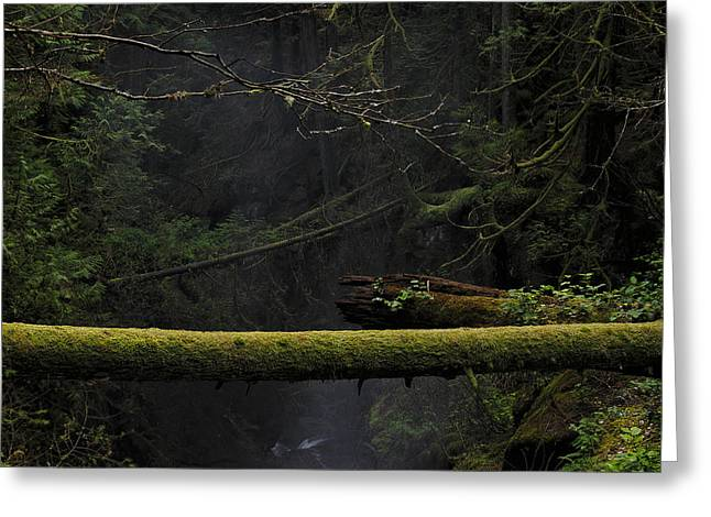 West Vancouver Greeting Cards - This is British Columbia No.64 - Squrriel Bridge Over Cypress Fa Greeting Card by Paul W Sharpe Aka Wizard of Wonders