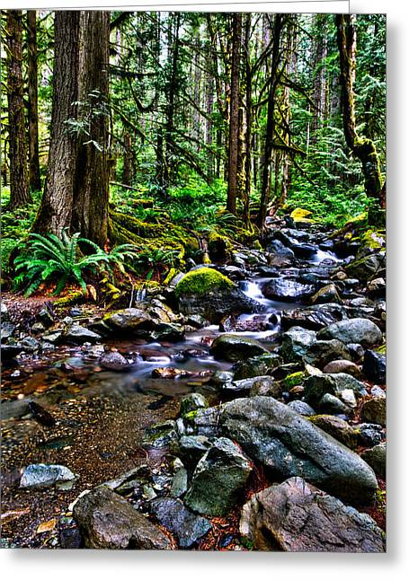 Stream Digital Art Greeting Cards - This is Washington State 1A - The stream at Nooksack Falls Greeting Card by Paul W Sharpe Aka Wizard of Wonders