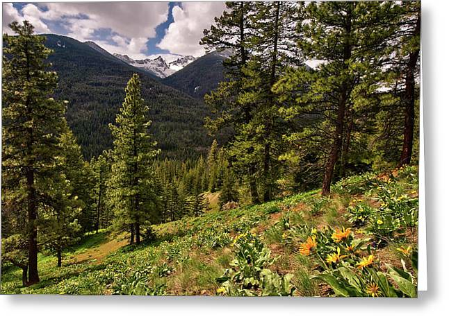 Okanogan National Forest Greeting Cards - This is Washington State No.1 - Klipchuck Greeting Card by Paul W Sharpe Aka Wizard of Wonders