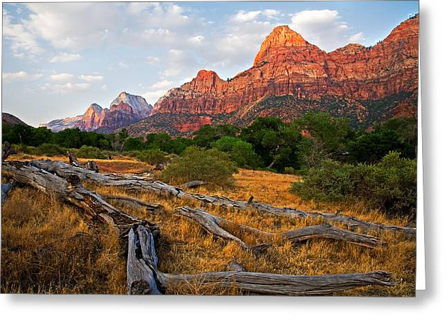 This is Zion Greeting Card by Peter Tellone