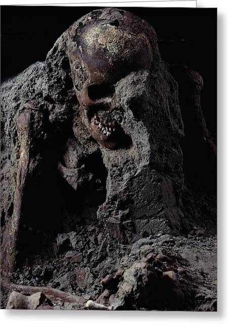 Herculaneum Greeting Cards - This Skeleton Is A Victim Of The A.d Greeting Card by O. Louis Mazzatenta