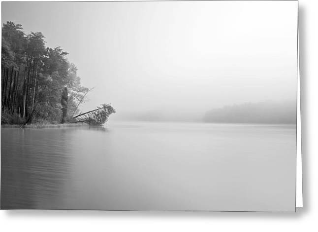 Thomasville Greeting Cards - Thom-a-Lex2 Greeting Card by Patrick M Lynch