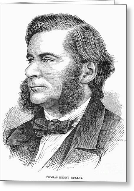 Sideburns Greeting Cards - Thomas Henry Huxley Greeting Card by Granger