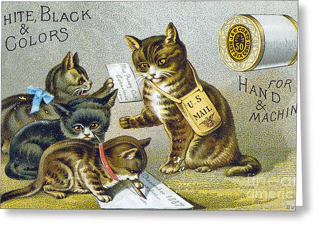 Cute Kitten Greeting Cards - Thread Trade Card, 1880 Greeting Card by Granger