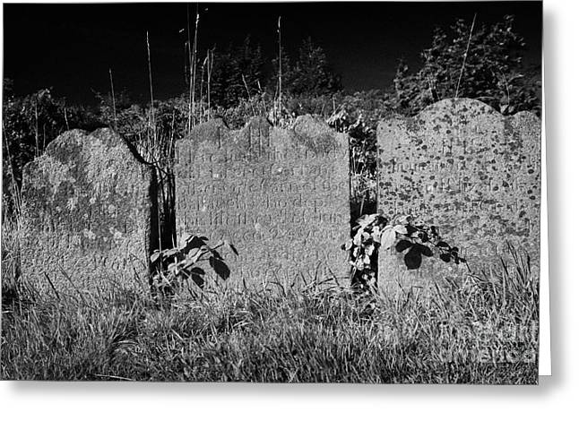 Headstones Greeting Cards - Three 18th Century Headstones In A Graveyard In County Down Northern Ireland Greeting Card by Joe Fox