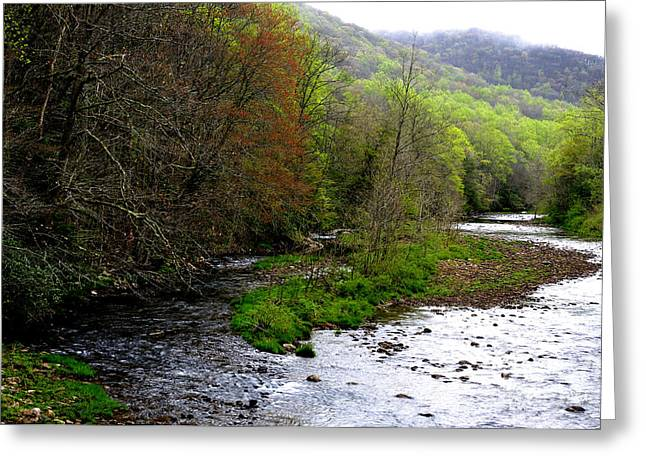 West Fork Greeting Cards - Three Forks of Williams River  Greeting Card by Thomas R Fletcher