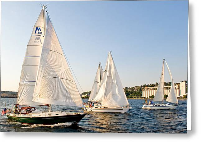 Wind In The Sails Greeting Cards - Three In the Wind Greeting Card by Tom Dowd