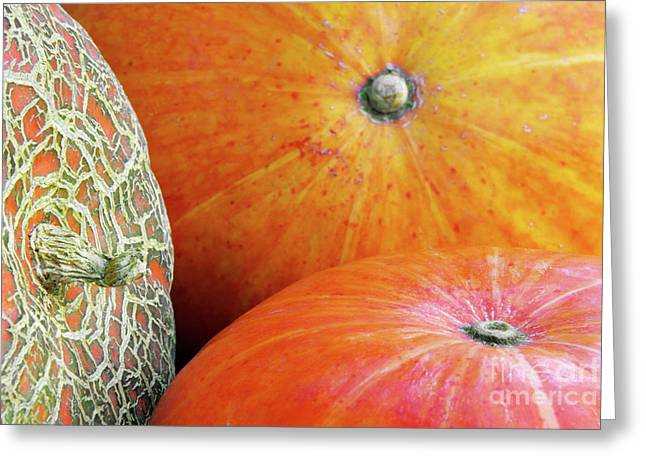 Harvest Photographs Greeting Cards - Three Pumpkins Greeting Card by Carlos Caetano