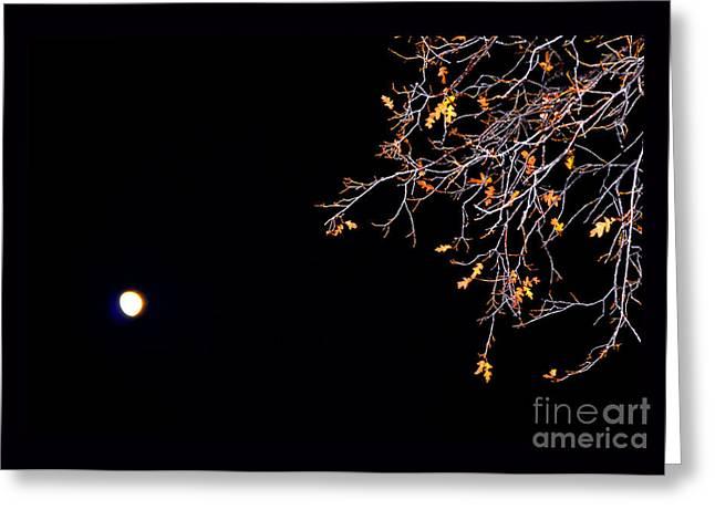 Moonrise Greeting Cards - Three Quarter Moonrise Greeting Card by Susanne Still