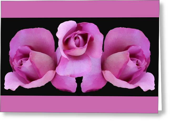 Three Roses Greeting Cards - Three Roses Painterly Greeting Card by Ernie Echols
