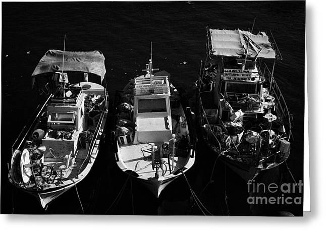 Pafos Greeting Cards - Three Small Local Greek Cypriot Fishing Boats In Kato Paphos Harbour Republic Of Cyprus Greeting Card by Joe Fox