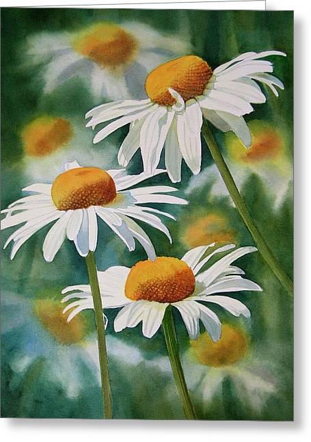 White Daisy Greeting Cards - Three Wild Daisies Greeting Card by Sharon Freeman