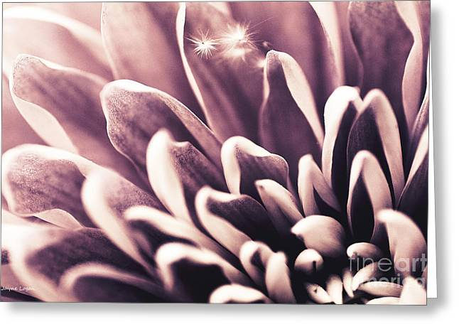 Print On Canvas Photographs Greeting Cards - Three Wishes Pretty Greeting Card by Jayne Logan Intveld