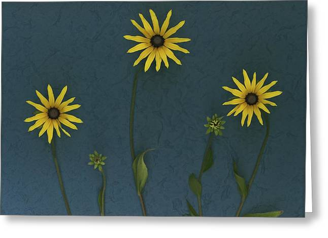 Indoor Still Life Greeting Cards - Three Yellow Flowers Greeting Card by Deddeda