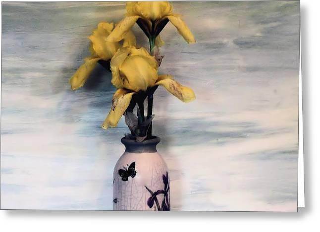 Three Yellow Irises Greeting Card by Marsha Heiken