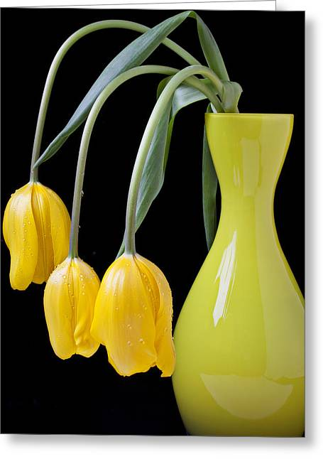 Dew Greeting Cards - Three yellow tulips Greeting Card by Garry Gay